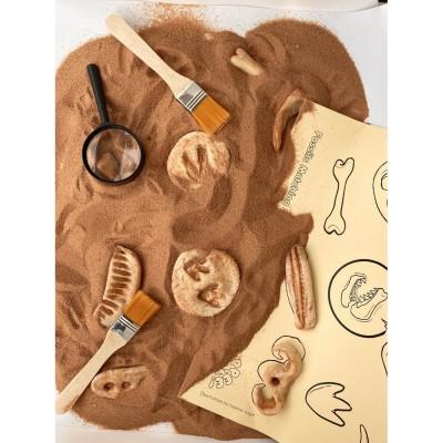 Yippee Dinosaur Fossils Kit